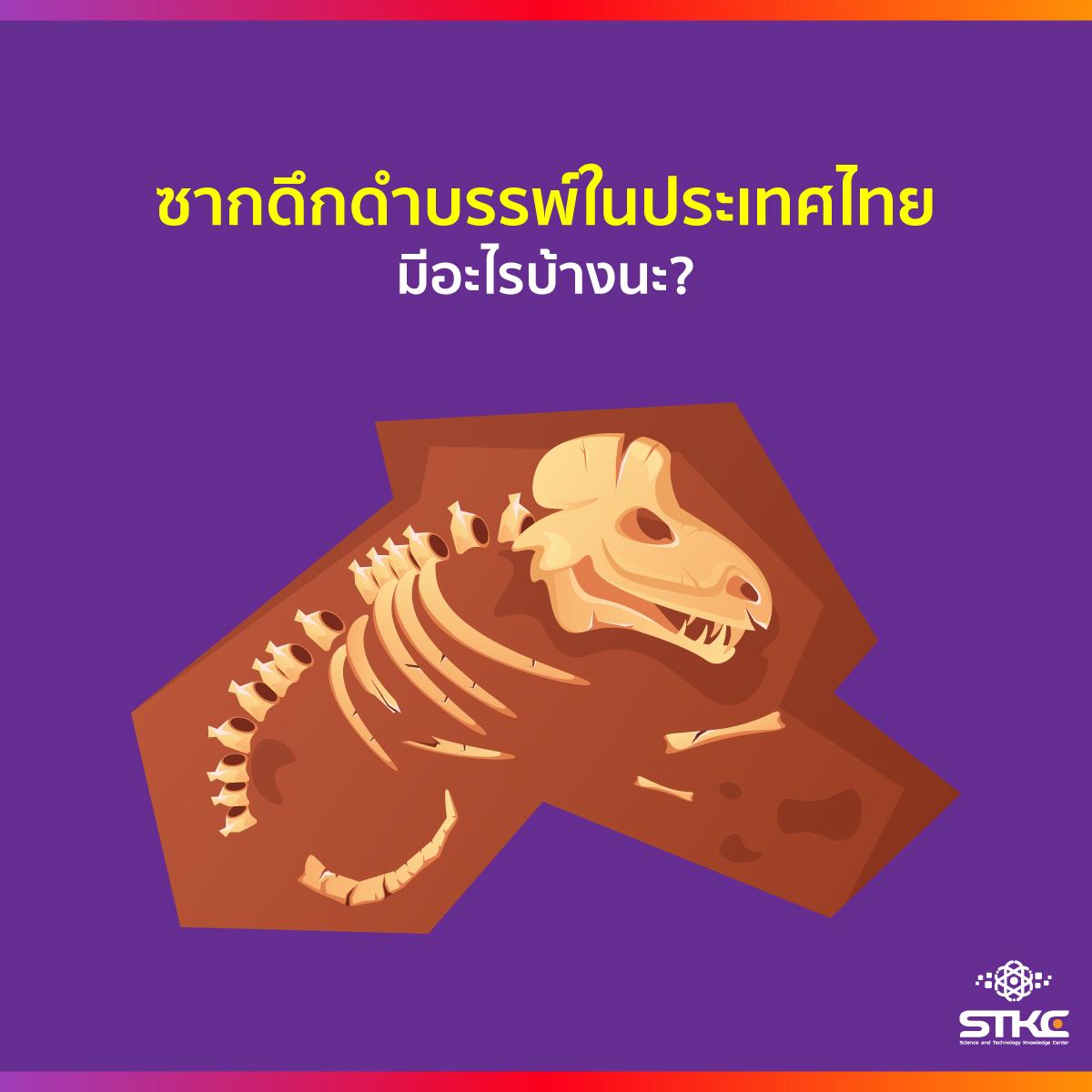 ซากดึกดำบรรพ์ในประเทศไทย