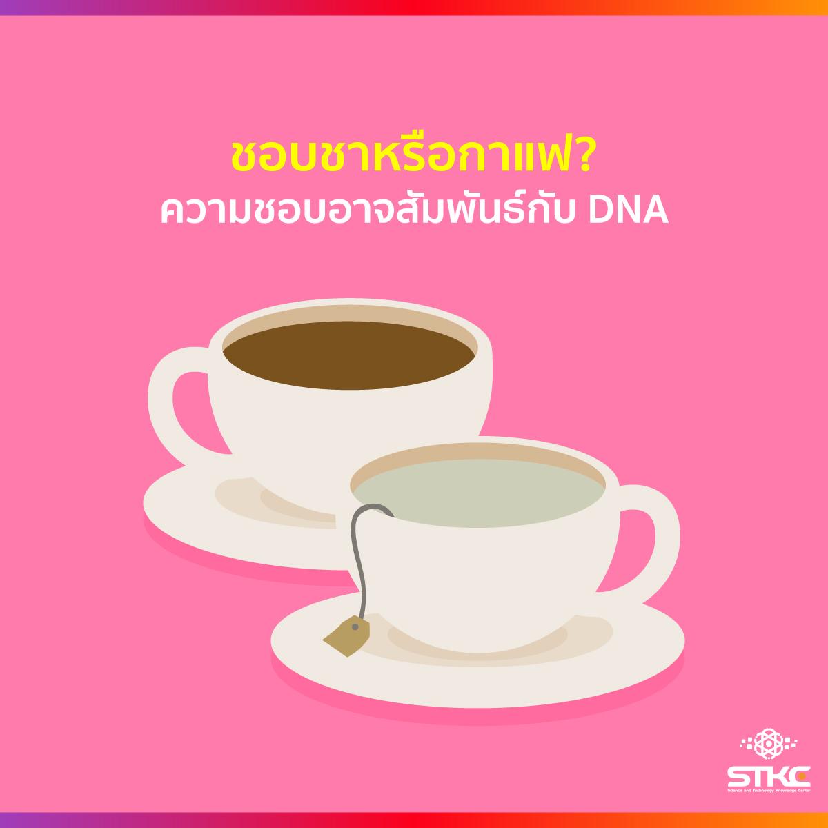 ชอบชาหรือกาแฟ? ความชอบอาจสัมพันธ์กับ DNA