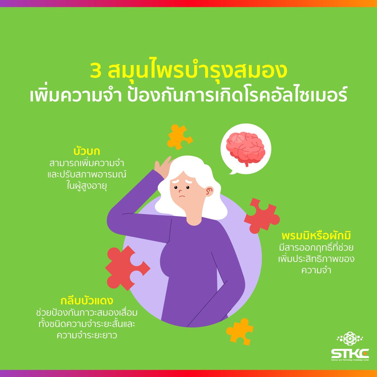 3 สมุนไพรบำรุงสมอง เพิ่มความจำ ป้องกันการเกิดโรคอัลไซเมอร์