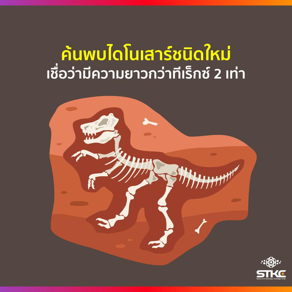 ค้นพบไดโนเสาร์ชนิดใหม่ เชื่อว่ามีความยาวกว่าทีเร็กซ์ 2 เท่า